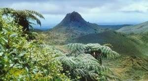 galapagos-islands-puntudo-cerro-crocker