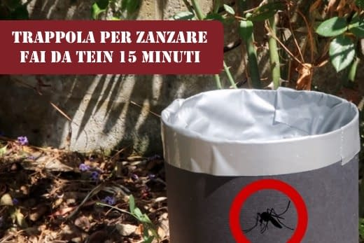 Come liberarsi dalle zanzare
